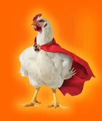 pollo bala