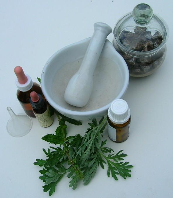 plantas-medicinales-y-sus-usos