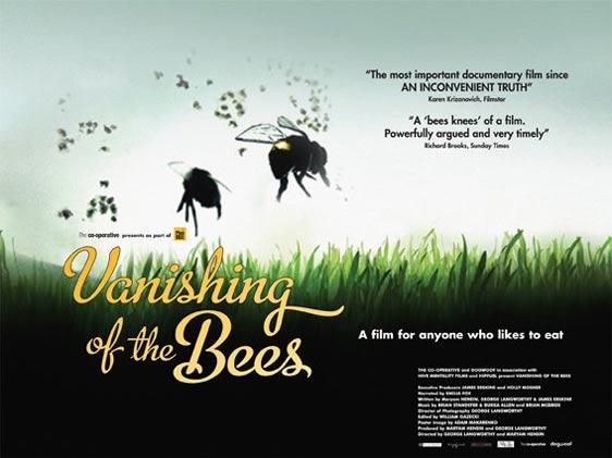 vanishing_bees