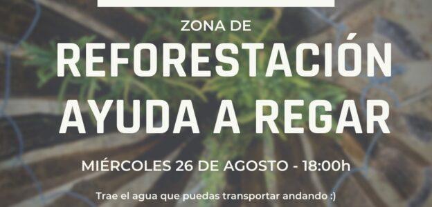 Reforestacion Barranco de Barb'asena